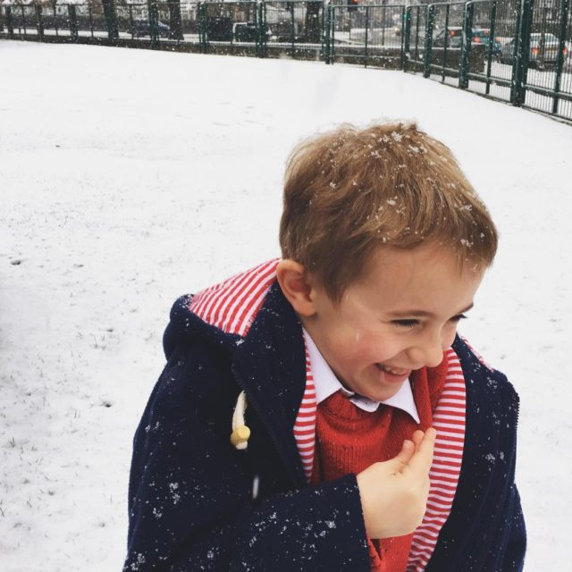 First time theyve seen proper snow in their memories Magic